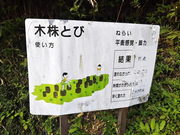 畦田キャンプ場 フィールドアスレチック1