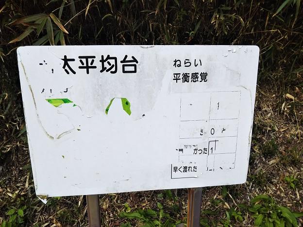 畦田キャンプ場 フィールドアスレチック2-1