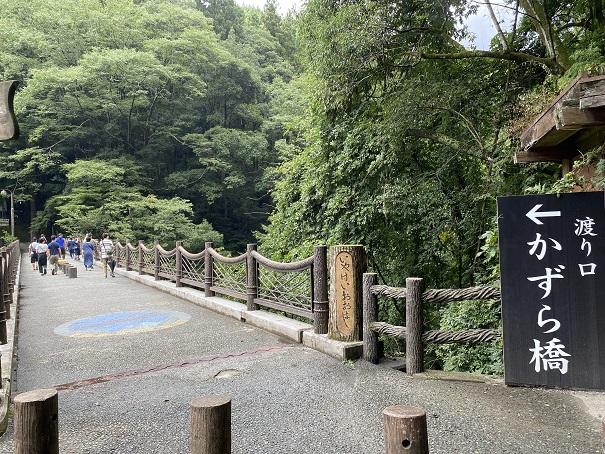 かずら橋へ渡る祖谷渓大橋