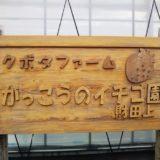 がっこうのイチゴ園財田上 看板