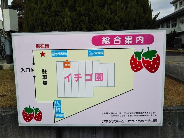 がっこうのイチゴ園財田上 案内図