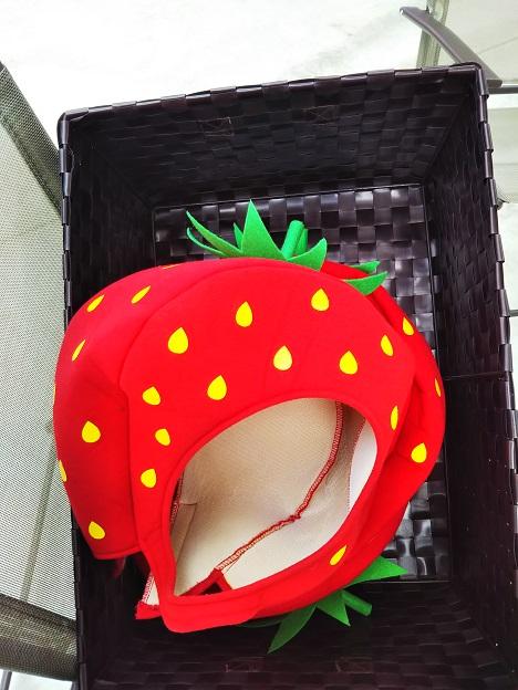 がっこうのイチゴ園財田上 いちごのかぶり物
