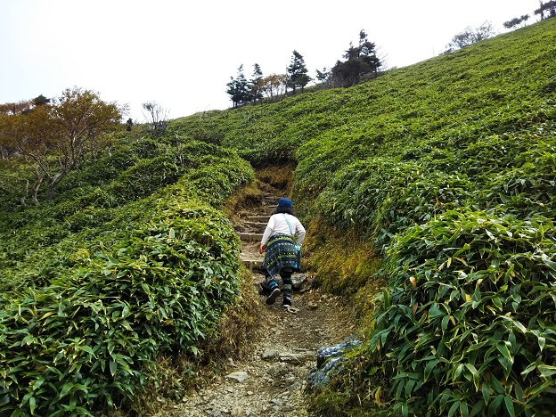剣山 頂上への道