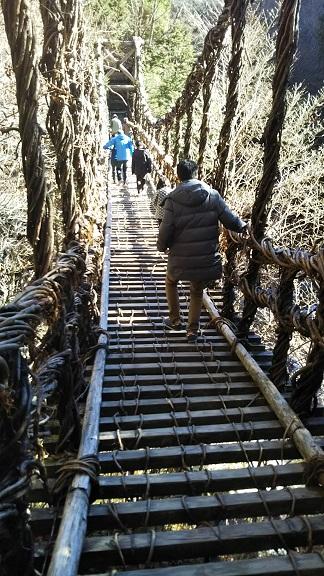 奥祖谷二重かずら橋 男橋