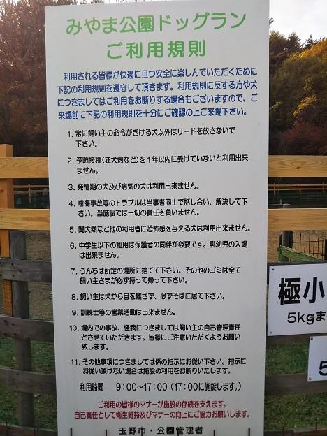 みやま公園 ドックラン注意2