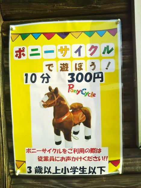 みやま公園 ポニーサイクル