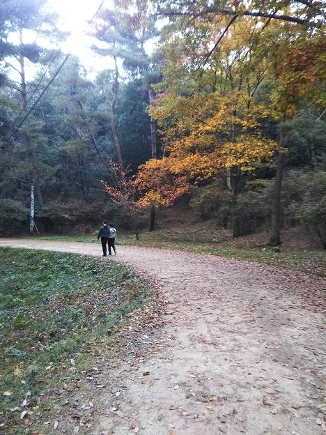 みやま公園 散策道