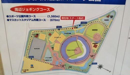 岡山県 倉敷スポーツ公園のスリル満点アスレチック