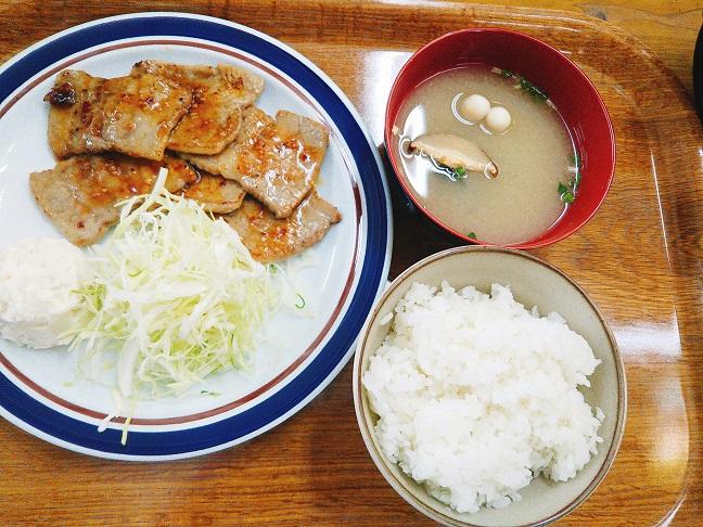 石鎚レストハウス 焼肉定食