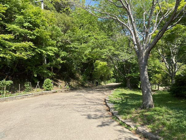 通路フォレスタ!早島町ふれあいの森公園
