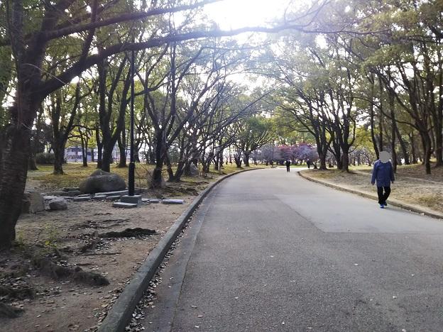 丸亀城 散歩道