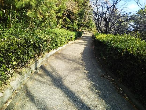 丸亀城 南側から天守へ登る2