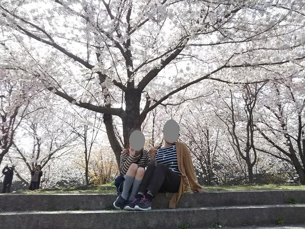 丸亀城 二の丸の桜