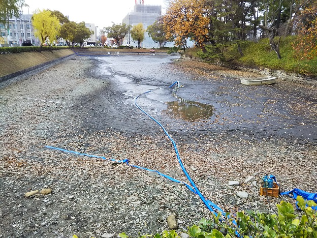 緊急SOS池の水を全部抜く大作戦