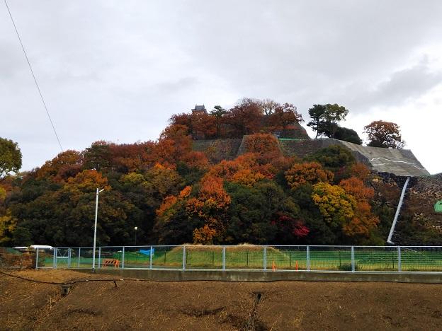 丸亀城の紅葉