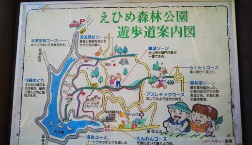 愛媛県の山中で楽しめるアスレチックえひめ森林公園