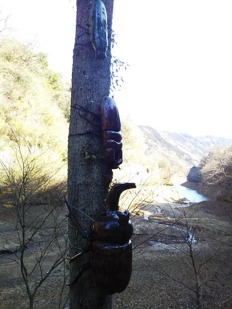 えひめ森林公園 大きなカブトムシ