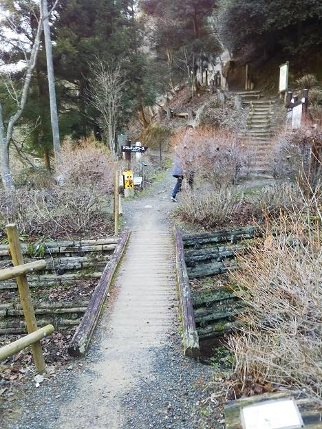 えひめ森林公園 橋