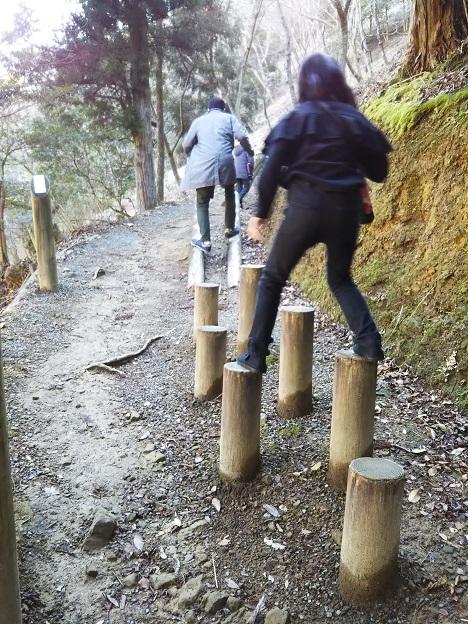 えひめ森林公園 アスレチック ①-1