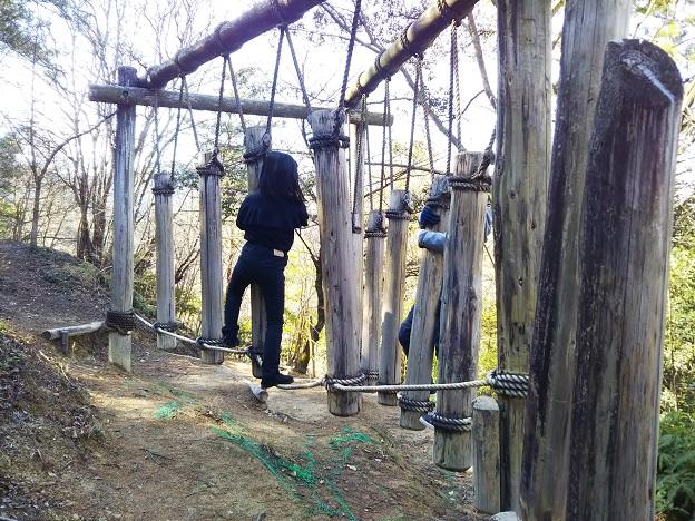 えひめ森林公園 アスレチック⑱