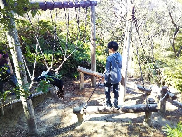 えひめ森林公園 アスレチック⑲