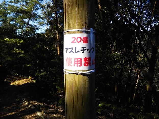 えひめ森林公園 アスレチック20-2