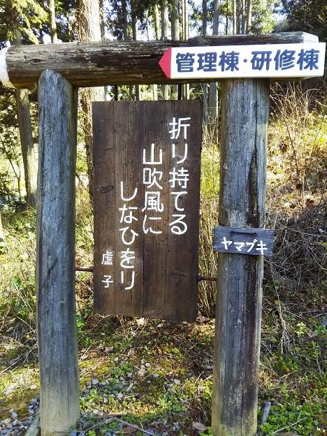 えひめ森林公園 句碑