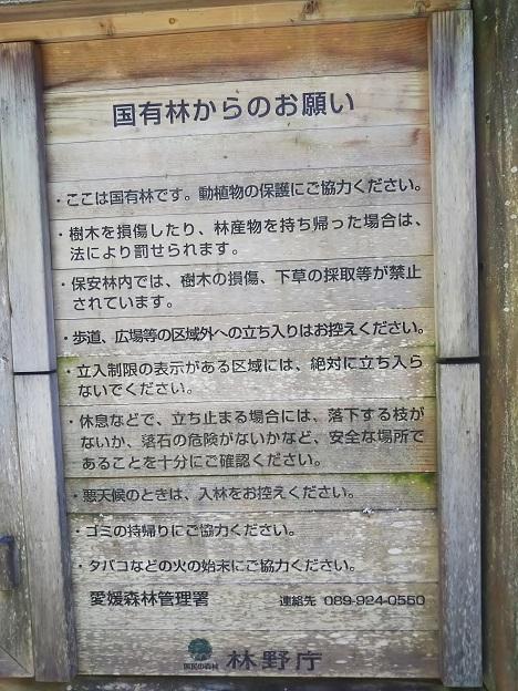 えひめ森林公園 国有林お願い