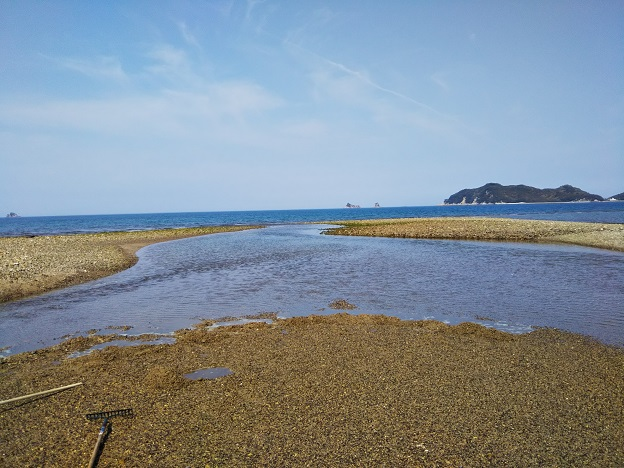 湊川河口10