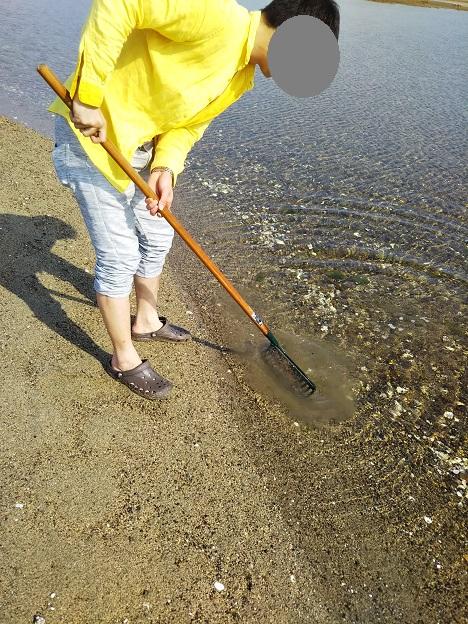 潮干狩りの仕方