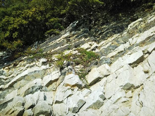ランプロファイヤ岩脈3