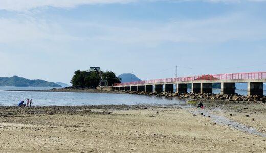 津嶋神社の海岸であさりの潮干狩り 子供の守り神 三豊市