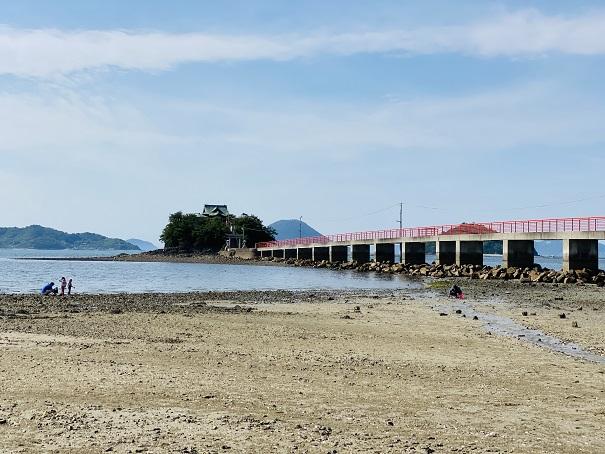 津嶋神社海岸あさり潮干狩り