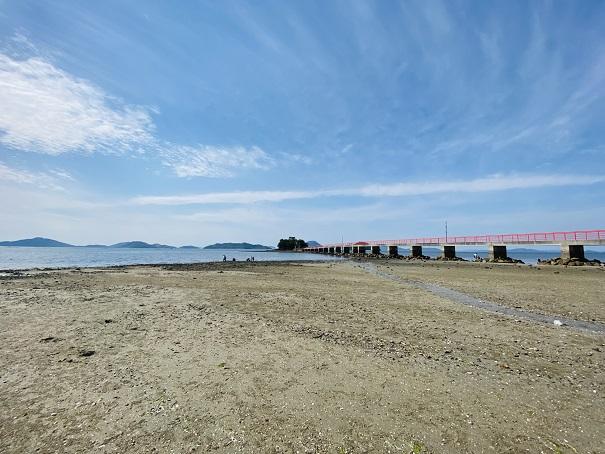 津嶋神社で潮干狩りで遊ぶ
