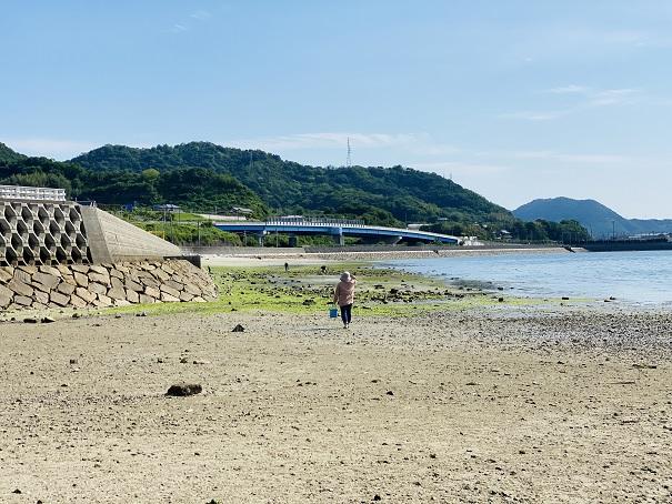 津嶋神社奥の潮干狩りポイント