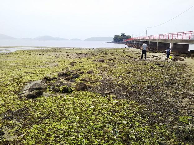 津嶋神社海岸2
