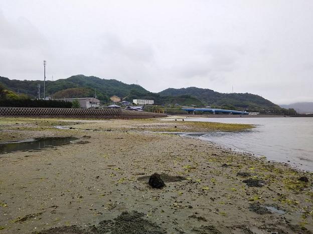 津嶋神社 海岸2