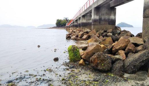 津嶋神社 三豊市の子供守り神の神社の海岸で潮干狩り