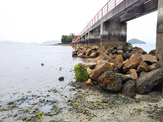 津嶋神社 海岸