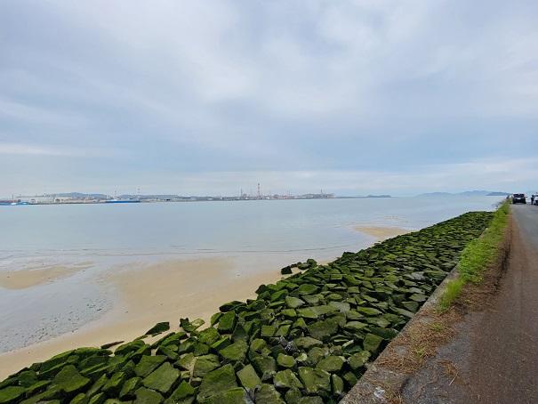 高梁川河口干潮時の水位が高い時も