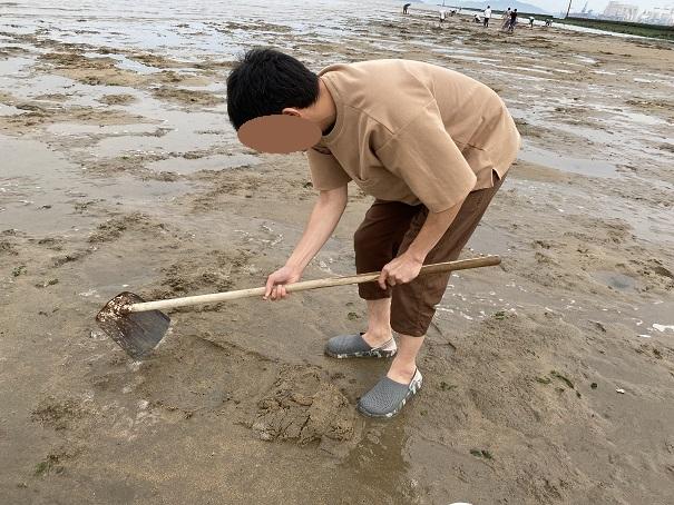 砂地を鋤簾で削る高梁川河口