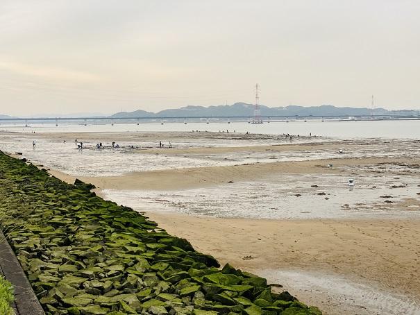 高梁川河口と潮干狩りの風景