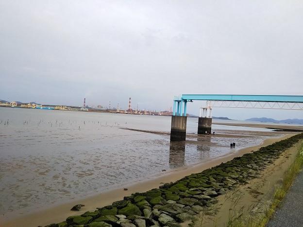 高梁川河口 干潟