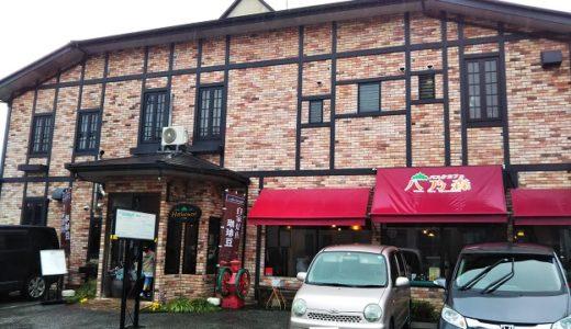 パスタカフェ八乃森 高知県で自家製生パスタが食べられるお店