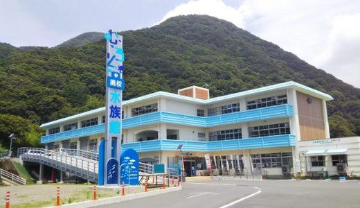 むろと廃校水族館 高知県室戸市の一味違う楽しい水族館