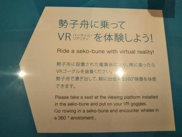 鯨館 VR体験案内