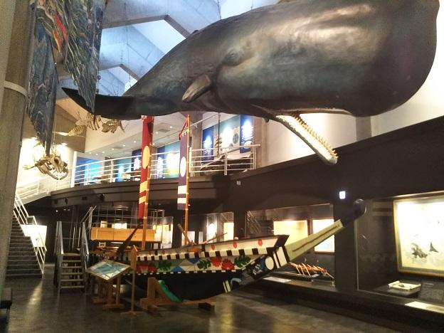 鯨館 店内
