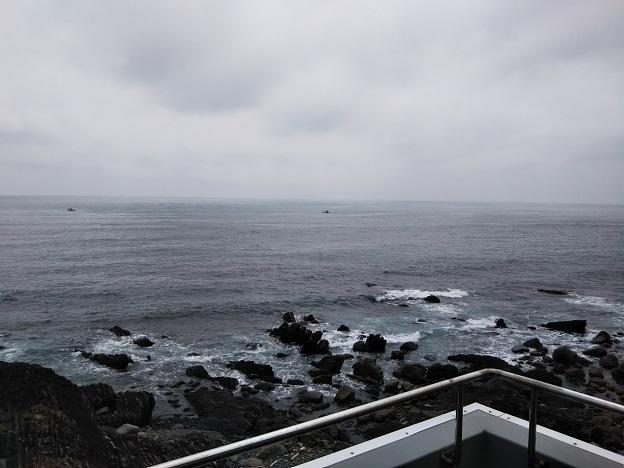 鯨館 展望