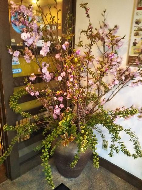 蔵人珈蔵 お花