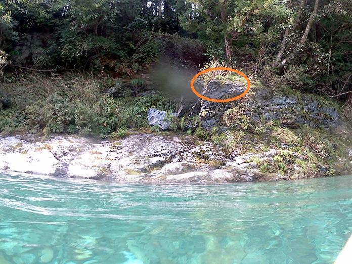 汗見川飛び込める岩